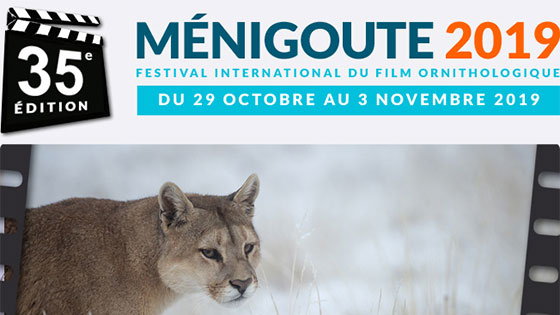 Festival international du film ornithologique de Ménigoute 2019