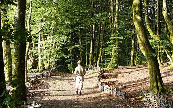 GR® de Pays - Tour du Morvan.  © Christian GUY / HEMIS
