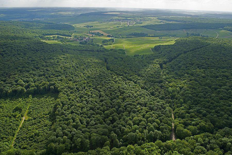 GR® 14 : sentier des Ardennes