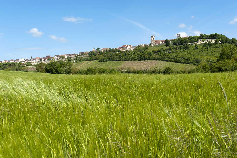 GR® 654 : le chemin vers Saint-Jacques-de-Compostelle via Vézelay