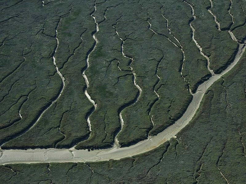 GR® 800 - Baie de Somme, Saint-Valéry-sur-Somme, Chenaux dans les Mollières (vue aérienne). Crédit : Francis CORMON / HEMIS