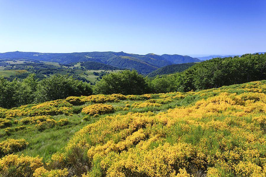 GR® de Pays Haute Cévenne d'Ardèche et Tour de la Montagne Ardéchoise