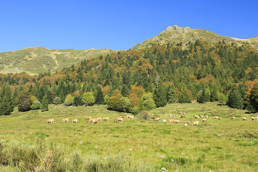 Le sentier GR 400 - Boucle de la vallée de l'Alagnon