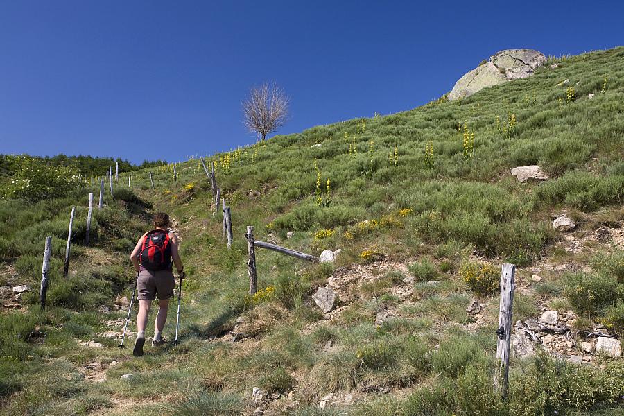GR de Pays Tour du Tanargue