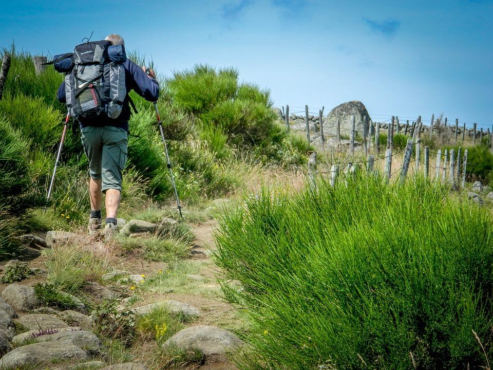 GR® de Pays et GR® 65, tour des Monts d'Aubrac