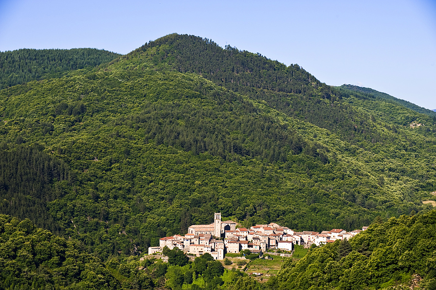 GR de Pays Haute Cévennes d'Ardèche